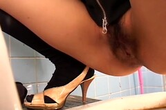 Japan Toilet Voyeur 2 (Long Version) Thumb